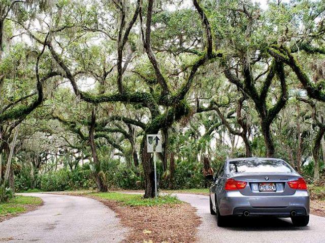 2009 BMW 3 Series - photo 4