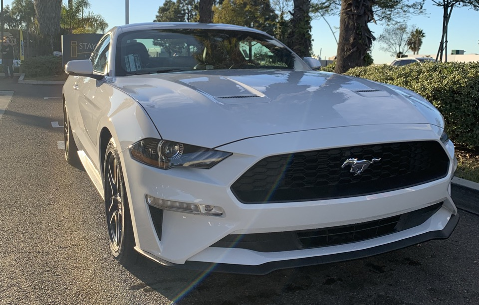 2019 Ford Mustang - photo 0