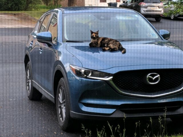 2018 Mazda CX-5 - photo 0