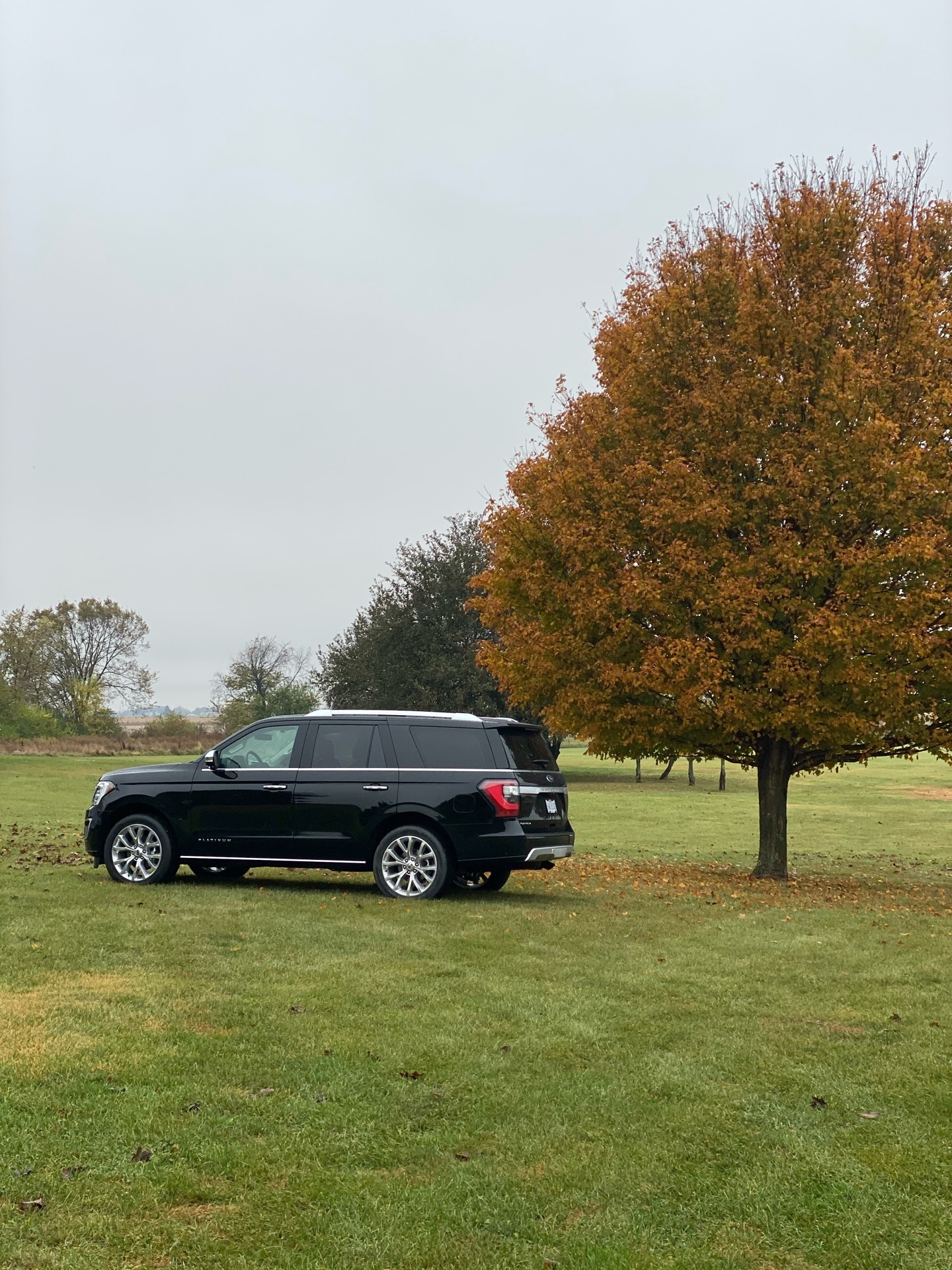 2019 Ford Expedition - photo 2