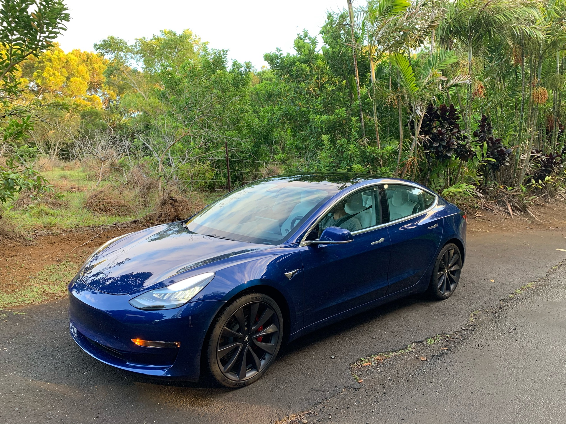 Tesla Model 3 2020 Lease Deals in Anahola, Hawaii ...